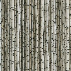 Shop | Category: Cream | Product: Knock on Wood Birch Wood fabric
