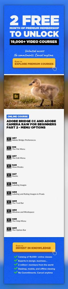 Adobe Bridge CC and Adobe Camera Raw for Beginners Part 2 - Menu Options Photography, Digital Photography, Dslr, Retouching, Creative, Camera, Post Production, Adobe Camera Raw, Adobe Bridge #onlinecourses #studyroom #onlinebusinesstips   Welcome to our course Adobe Bridge CC and Adobe Camera Raw For Beginners! In this part 2 course, we will focus on the menu bar. *** This Is Part 2 Of A 4 Part Se...