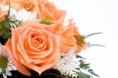 fleur nantes carquefou loire atlantique fleuriste mariage deuil decoration florale 44