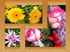 Bilderrahmen,Blumen,Dekoration,Herbst,Fraben,farbig