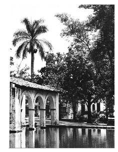 Jardin Borda, Cuernavaca, from Patios and Gardens of Mexico, Patricia O'Gorman
