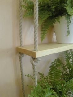 Flowers shelf made from jute rope and a wooden plank