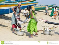 Women With Fishes At The Fish Market/India, fisherman village near Puri,