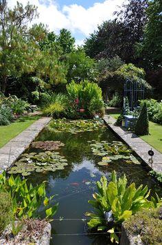 Formal pond / rain water