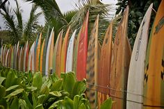 Surf Board Fence on Maui by Go Visit Hawaii, via Flickr