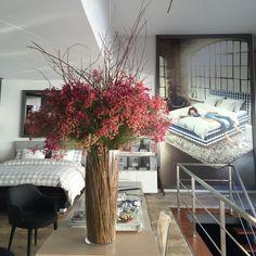Hästens Store Porto Portugal, Store, Plants, Porto, Larger, Plant, Shop, Planets