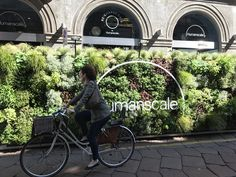 Humanscale's RE:CHARGE Café in Milan. Inspired by nature and well-being. With state of the art charging stations, biological lighting and healthy green shots, the relaxing space encourages rejuvenation of both body and mind. Living Green walls, a vertical garden creating an urban jungle on the streets of Milan.