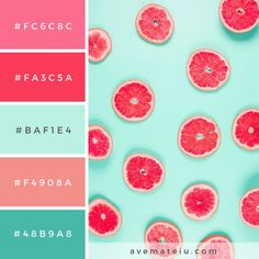Pattern of grapefruit citrus slices on pastel backdrop. Color Palette - Pattern of grapefruit citrus slices on pastel backdrop. Color Palette – Color combination, Co - Color Schemes Colour Palettes, Pastel Colour Palette, Colour Pallette, Color Palate, Pastel Colors, Color Trends, Color Combos, Summer Color Palettes, Bright Color Schemes