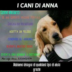 Collettivo Roxland (RdC Creations Italia): Segnalazioni a 4 zampe: I cani di Anna