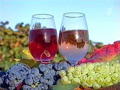 Hungarian wine tastings, wine tours in Hungary