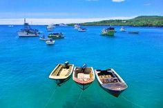エクアドル・ガラパゴス諸島、サンタ・クルス島アヨラ港