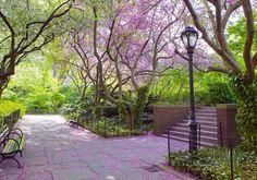 Прогулка по весенним садам и паркам. Обсуждение на LiveInternet - Российский Сервис Онлайн-Дневников