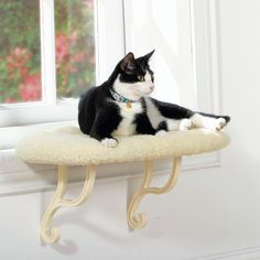 Window perches make for cat-friendly apartments. Check this one out!