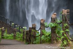 Portland Day Tripping:  Waterfalls