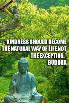 Kindness should become the natural way of life, not the exception. - Buddha