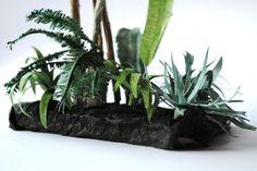 Palmiarnia, Palm house