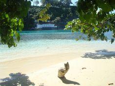 Monkey Island View,