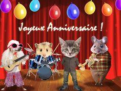 Joyeux Anniversaire Humour | joyeux-anniversaire-humour-chats-musiciens-flora