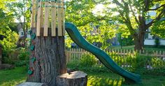 Our tree trunk is now a climbing wall, crow's nest and slide I am so glad that I took a video last year of our giant mature maple tree (...