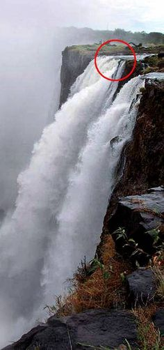 Yes you can swim where that circle is.  Devils pool, Victoria Falls Africa. AMAZING.