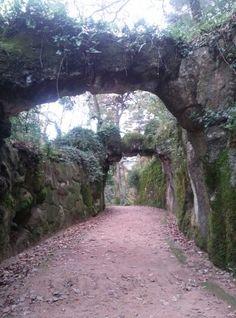 The Palace' s gardens in Quinta da Regaleira, Sintra