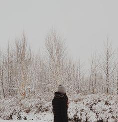 a winter wonderland  ~anewall