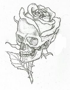 Simple skulls and roses drawings easy skull drawings, simple skull drawing, rose drawings, Cool Art Drawings, Art Sketches, Drawings Of Skulls, Drawing Pictures, Tattoo Sketches, Drawings About Love, Cool Simple Drawings, Simple Drawing Designs, Simple Drawings For Beginners