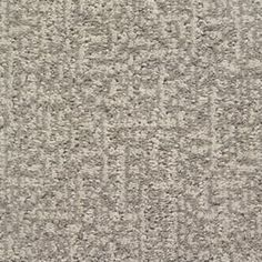 Stainmaster Duchess Petprotect Barkley Cut And Loop Carpet Sample S795182barkley-7599
