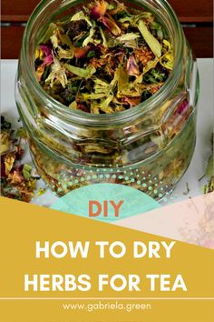 How to dry herbs for tea in 5 easy steps - Gabriela Green DIY- How to dry herbs for tea - Gabriela Green - eenDIY- How to dry herbs for tea - Gabriela Green - een Kitchen Herbs, Green Kitchen, Kitchen Tips, Kitchen Decor, Herbs For Health, Herbs For Tea, Homemade Tea, Tea Benefits, Health Benefits