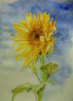 Sunflowers Tutorial Vincent Van Gogh Starry Night