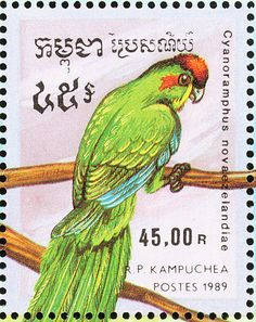 Red-crowned Parakeet stamps - mainly images - gallery format