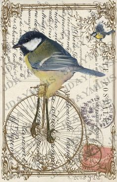 French Postcard Bird Biking Digital Collage French by jdayminis, Art Vintage, Vintage Cards, Vintage Postcards, Vintage Prints, Vintage Pictures, Vintage Images, Collage Art, Digital Collage, Collage Sheet
