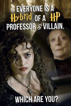 Everyone Is A Hybrid Of A HP Professor & Villain  Which Are