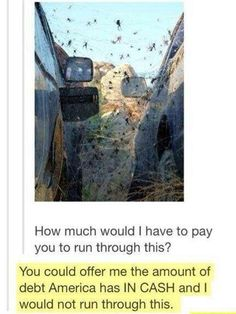 Hell no, I would never run through that frickin spider haven.