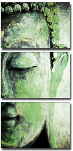 """""""There's a famous quotation from the time the Buddha learned of the deaths of two of his greatest disciples: """"It's as if the sun and the moon have left the sky."""" From that quotation, I would guess that while the Buddha loved all beings everywhere, with no exclusion, he also had relationships that were special to him, and he felt their loss.""""   ~ Sharon Salzberg, - 'The Open Heart,""""    ॐ lis"""