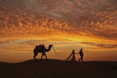 Nearly images were submitted to Junebug Weddings 2016 Best of the Best Wedding Photo Contest from photographers in 50 different countries. Here's a look at the top 50 winners! Indian Destination Wedding, India Wedding, Destination Weddings, Wedding Desert, Event Planning Tips, Wedding Preparation, Thing 1, Wedding Pictures, Wedding Ideas