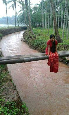 Cool... Kerala...