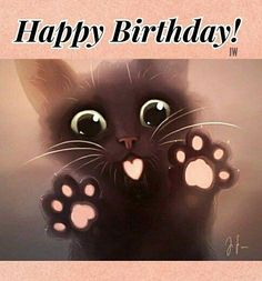 m Happy Birthday Son ! Cat Birthday Wishes, Funny Happy Birthday Song, Happy Birthday Flower, Happy Birthday Jesus, Happy Birthday Messages, Happy Birthday Images, Happy Birthday Greetings, Birthday Posts, Happy B Day