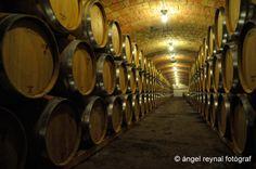 """Àngel Reynal ha fotografiado nuestra bodega para su proyecto """"Singularitats"""". ¡Aquí envejecen nuestros vinos! Grow Old, Wine, Wine Cellars"""