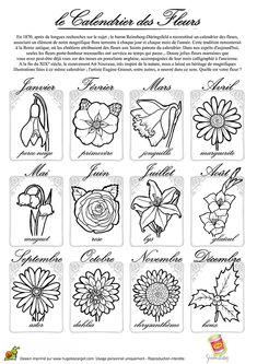 Un joli calendrier de fleurs, à colorier