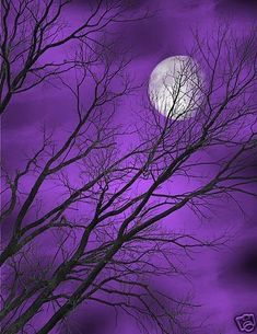 Purple Sky, Purple Love, All Things Purple, Shades Of Purple, Deep Purple, Periwinkle, Violet Aesthetic, Aesthetic Colors, Purple Wallpaper