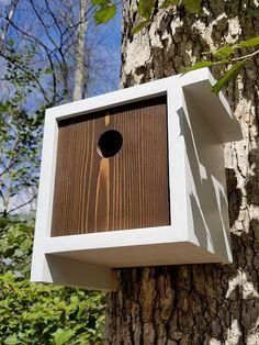 Wooden Bird Houses, Bird Houses Painted, Decorative Bird Houses, Bird Houses Diy, Bird House Plans, Bird House Kits, Bird House Feeder, Bird Feeders, Modern Birdhouses