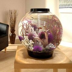 biOrb Black Mega Aquarium Kit with Light. Form and function come together in this easy-to-set-up, stylish aquarium kit. Aquarium Shop, Aquarium Kit, Saltwater Aquarium, Freshwater Aquarium, Aquarium Ideas, Aquarium Design, Aquarium Decorations, Biorb Fish Tank, Cool Fish Tanks