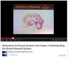 Il sistema della ricompensa / Motivation to Pursue Dreams and Hopes: Understanding the Brain's Reward System