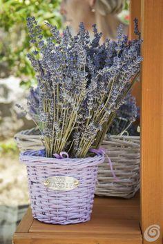 #MazzTuinmeubelen-- #Inspiratie #Decoratie #Lavendel #Flowers #Tuin #Lavender #Decorations #Franche #Garden #Home