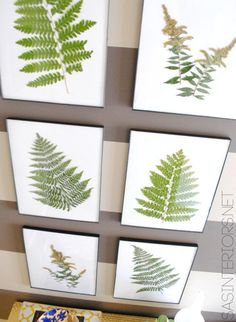 Diy Crafts Ideas : Bring the Outdoors in by using ferns and creating art.