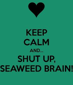 Percy Jackson keep calm and Shut Up Seaweed Brain! Percy Jackson Quotes, Percy Jackson Fan Art, Percy Jackson Books, Percy Jackson Fandom, Percabeth, Solangelo, Percy Jackson Wallpaper, Dibujos Percy Jackson, Percy And Annabeth