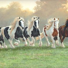 Gypsy vanner horses counted cross stitch pattern