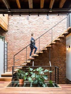Modern home with Staircase, Wood Tread, and Metal Railing. Stairs to roof, glass floor provides light to floor below Photo 5 of Brooklyn Upside Down with Views