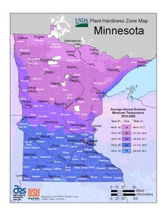 Minnesota plant hardiness zones, educational site on choosing various types of plants (using proper verbage ).